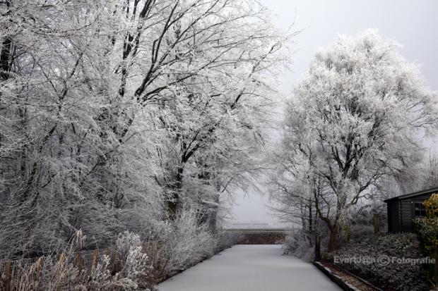 Winter in de NOP